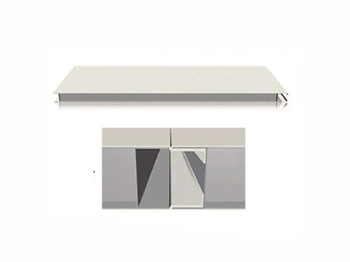 正规净化板订购|和信彩钢质量为先